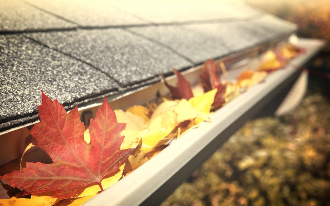 Why You Should Clean Your Gutters Before Fall