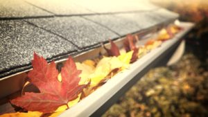 Gutter Cleaning Paducah KY