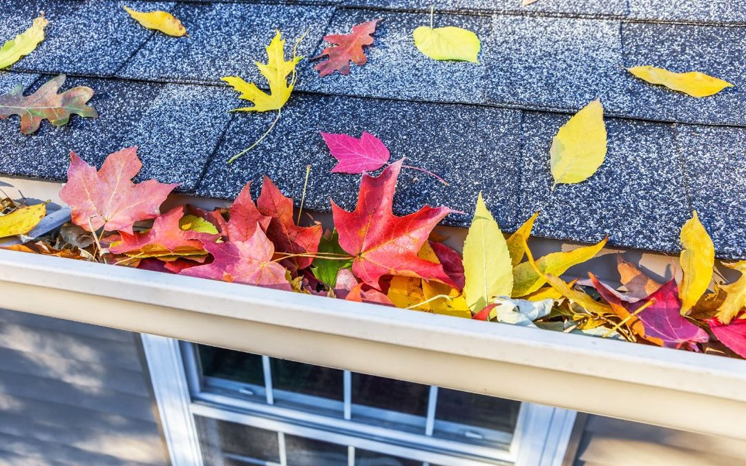 Time To Prepare Your Gutters For Fall