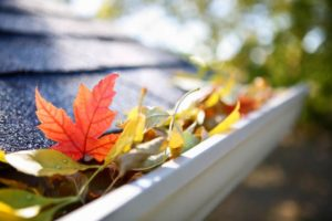 Fall Gutter Cleaning Paducah