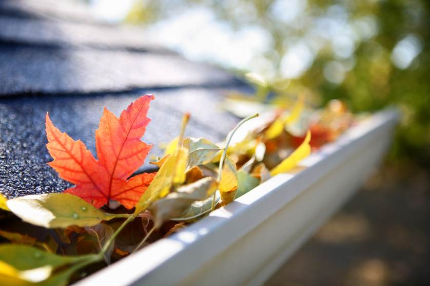 4 Tips To Prepare Your Gutters For Fall