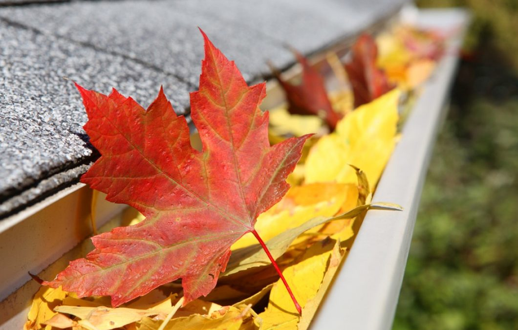 How To Prepare Your Gutters For Fall