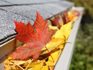 Fall Gutter Cleaning Paducah KY