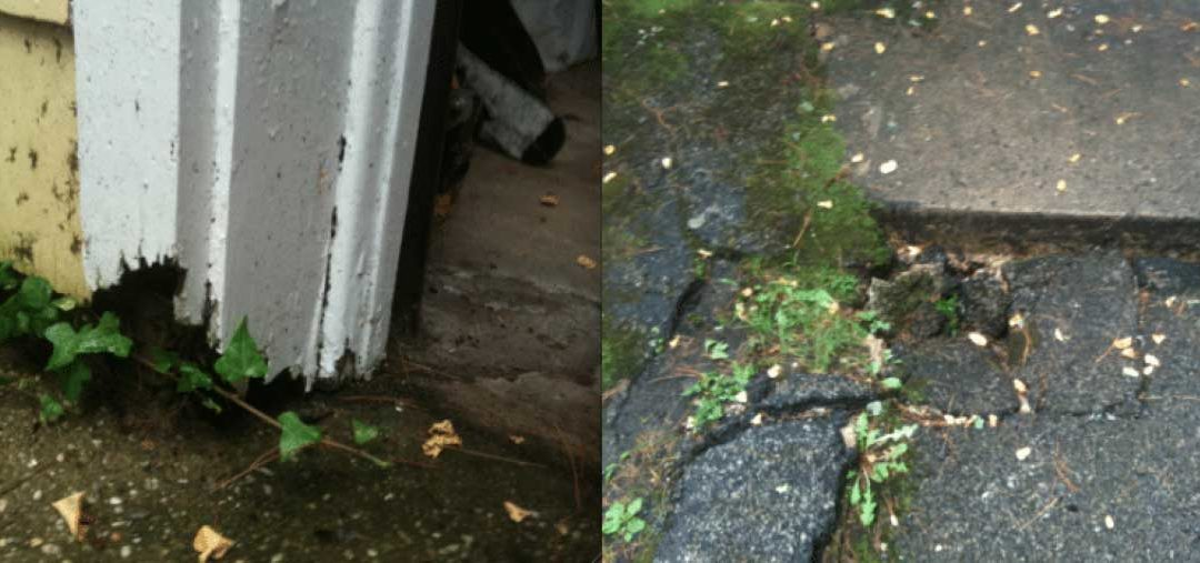 Warning Signs of Damaged Water Gutters