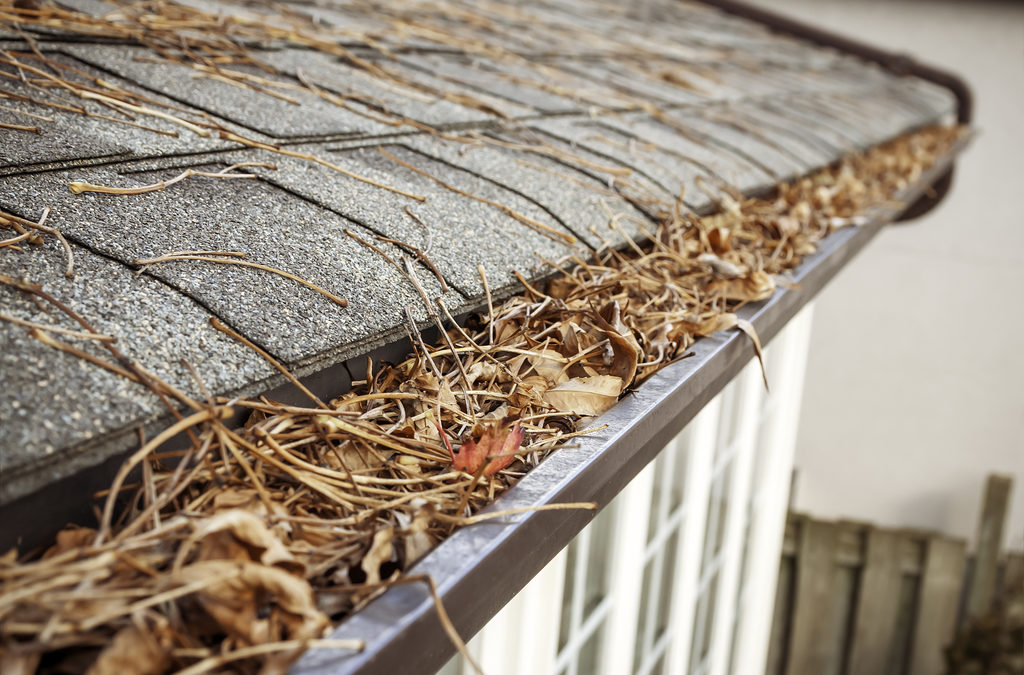 Why Fall Is A Good Time To Clean Your Gutters