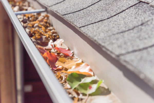 Are Your Gutters Ready For Fall