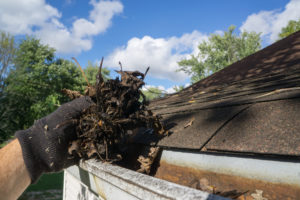 Western Kentucky Gutter Cleaning