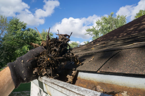 Consider This Before Cleaning Your Own Gutters